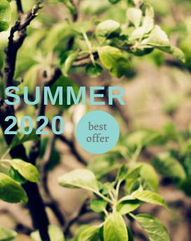 BEST SUMMER OFFER of Vozdvyzhensky boutique hotel